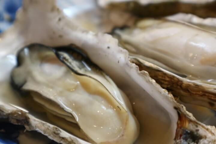 ぷりっぷりの牡蠣のアップ写真