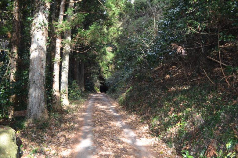 鮫ヶ浦水曜日郵便局へ向かう千と千尋の神隠しに出てきそうなトンネルの入口