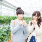 イチゴ狩りを楽しむ女の子二人