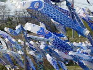 青い鯉のぼりプロジェクト