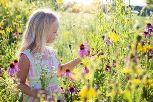 お花畑と少女
